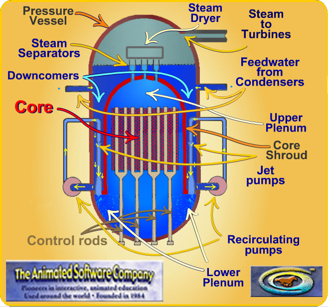 Boiling Water Reactors have a lot of pumps