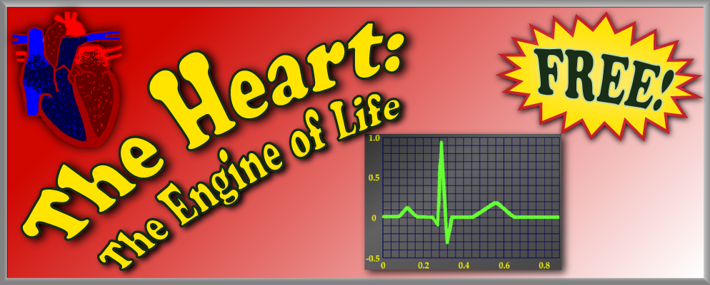 The Heart: The Engine of Life banner